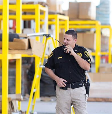Two Way Radios for Security Sites EVX-VX